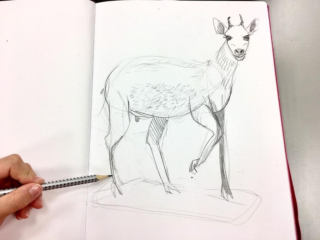 Wintersemester_Grundlagen des Zeichnens